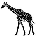 Giraffe cute illustration black and white stylized outline of an elegant animal Stock Photography
