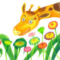 Giraffe and flower Stock Photos