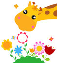 Giraffe and flower Stock Image