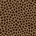 Giraffe fur Royalty Free Stock Image