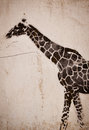 Giraffe graffiti on the wall urban design Stock Image
