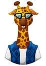 Giraffe hipster in a jacket and sunglasses