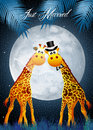 Giraffe in the moonlight illustration of Stock Photos