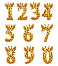 Giraffe numeral set Stock Images