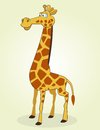 Giraffe vector illustration of cartoon Stock Images