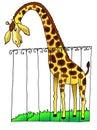 Giraffe zoo africa drawing humour Royalty Free Stock Photo