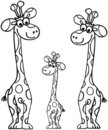 Giraffes de famille Photo stock