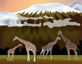 Giraffes near mountain illustration Stock Images