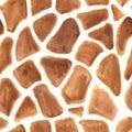 Giraffes spots seamless pattern