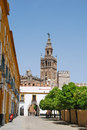 Giralda tower Stock Images