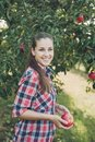 Girl with Apple in the Apple Orchard Royalty Free Stock Photo