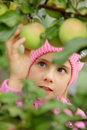 The girl and an apple-tree Royalty Free Stock Photo
