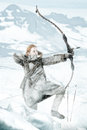 Girl archer wild in the snow with bow Stock Photography