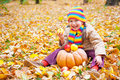 Girl in autumn park with pumpkin and apples the Royalty Free Stock Image