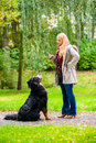 Girl in autumn park training her dog in obedience giving the sit command Stock Photography