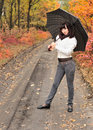 The girl in an autumn wood with a umbrella. Stock Images