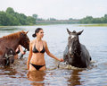 Girl bathe horse in a river Stock Photography