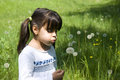 Girl blowing a dandelion little on the meadow Royalty Free Stock Image