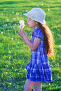 Girl blowing to dandelions in a hat bunch of standing on a green meadow Stock Image