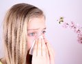 Girl blows her nose with handkerchief and cherry blossoms allergy concept Royalty Free Stock Images
