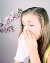 Girl blows her nose with handkerchief cherry blossoms health concept Royalty Free Stock Photography