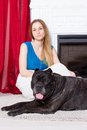 Girl in blue dress sitting by the fireplace with dog Cane Corso Royalty Free Stock Photo