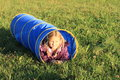 Girl in blue kids tunnel little lying for Stock Images