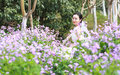 Girl bride in wedding dress with elegant hairstyle, with white wedding dress in Orychophragmus violaceus flower field Royalty Free Stock Photo