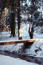 Girl on the bridge in winter forest Royalty Free Stock Photos