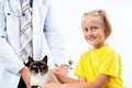 Girl brought the cat to the veterinarian examines a Royalty Free Stock Photo