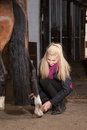 Girl brushes her pony is brushing the legs of brown new forest Royalty Free Stock Photo