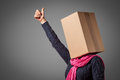 Girl with cardboard box head Stock Photography