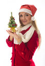 Girl with christmas tree Royalty Free Stock Images
