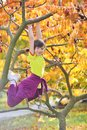 Girl climbed on tree Stock Photos