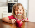Girl are considering a magnifying glass apple child Stock Photos