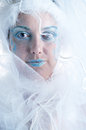 Girl with creative winter makeup the and veil Royalty Free Stock Photography