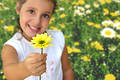 Girl with daisy Royalty Free Stock Photo