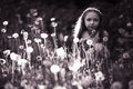 Girl in  dandelion field Royalty Free Stock Photo