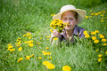 Girl dandelions in countryside with Royalty Free Stock Photography