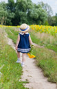 Girl in a dark blue dress near a field of blossoming sunflowers little goes on footpath Royalty Free Stock Photo