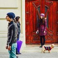 Girl with dog passing people on street Royalty Free Stock Image