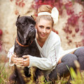 Girl and dog portrait of a young hugging a big cane corso Royalty Free Stock Images