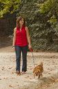 Girl with dog walking on the park. Stock Images