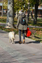 Girl and dog walking Royalty Free Stock Photo