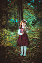 Girl in a dress at autumn Royalty Free Stock Photography