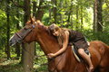 Girl in dress and brown horse portrait in forest summer Royalty Free Stock Photos