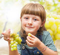 Girl eating grapes in the vineyards a Stock Photos