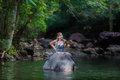The girl with the elephant in the water Stock Image