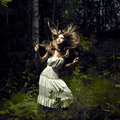 Girl in fairy forest Royalty Free Stock Photos
