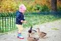 Girl feeding ducks Royalty Free Stock Photo